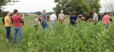 Festival of Farms Pasture Walk 2014