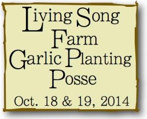 Garlic Planting Posse