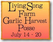Garlic Harvest Posse 2016