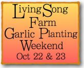 garlic-planting-weekend-2016