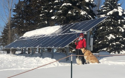 Marienne solar panels dogs snow